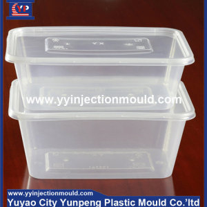 High quality plastic injection thin wall lunch box mould/molding (from Tea)
