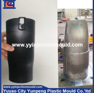 China custom plastic test tube mold(Amy)
