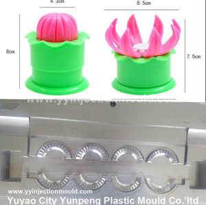 China Single/Various shapes plastic Dumpling mold factory (Amy)