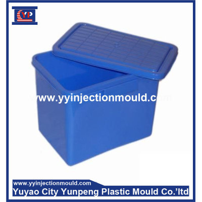 Plastic injection moulding/molding sale and plastic products for storage box/container (from Tea)