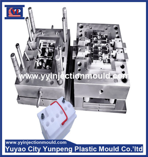 High Precision Battery Container/Case/box Mold (from Tea)