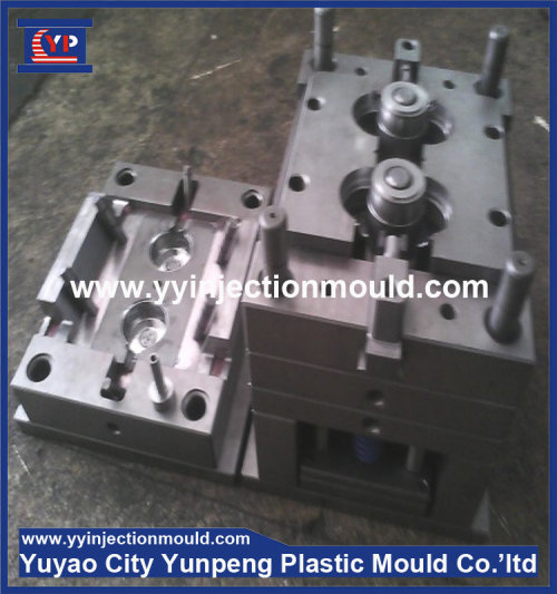Customized Plastic injection mould  (from Tea)