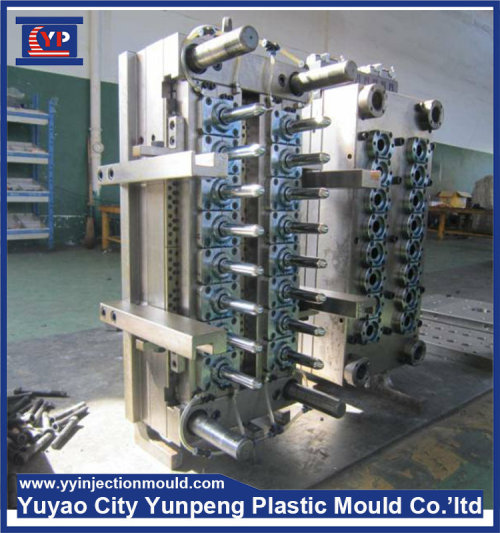 Perfume tube mold plastic injection mould (Amy)
