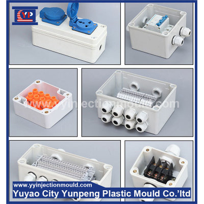 distribution box supplies with leakage protection plastic box mold (Amy)