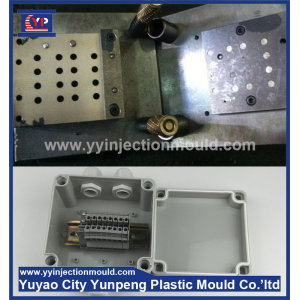 electrical distribution box plastic mold design and production mold (Amy)