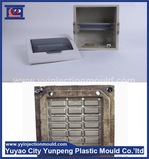 China factory cheap price distribution box mold, plastic injection distribution box mould (Amy)