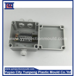 power distribution box plastic mold (Amy)