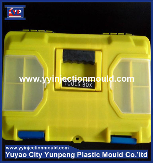 Injection Plastic Distribution Storage Box Mould (from Tea)