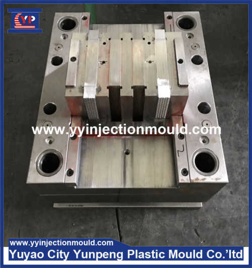 OEM/ODM Custom Plastic Injection Mould Manufacturing (From Cherry)