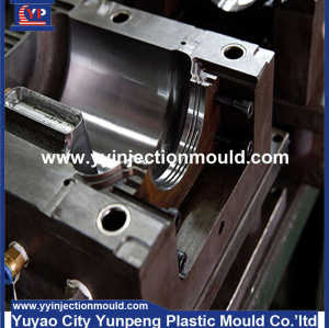 China Manufacturer Professional Custom High Quality Plastic Injection Moulding(From Cherry)