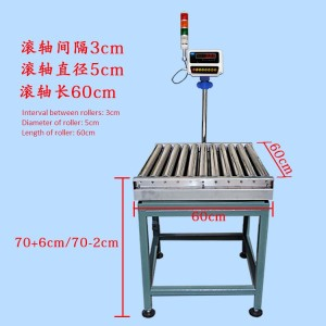 RC6060 Express Roller conveyor scale