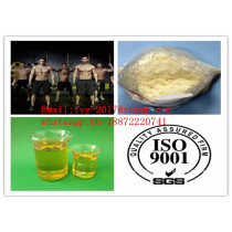 Manufacture Price High Quality Testosterone Phenylpropionate Injectable Anabolic Steroids Powder CAS 1255-49-8
