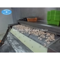 Tunnel freezing 200kg/h for fruit or seafood and other food processing