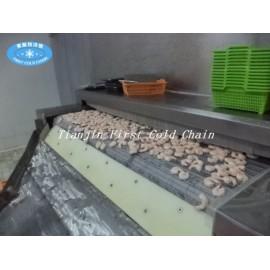 Congelador rápido para túnel / Congelador rápido de túnel de congelación de alimentos