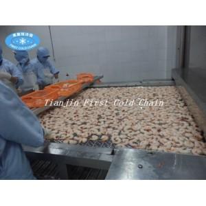 Быстрая морозильная машина для пищевых продуктов / Морозильная камера IQF