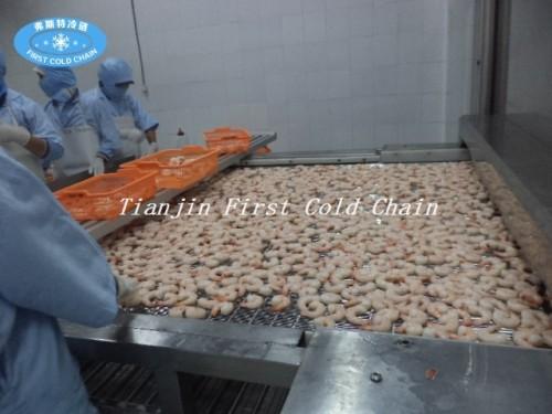 Máquina de congelación rápida de alimentos / Congelador de túnel IQF