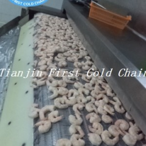 China Factory suministra directamente un congelador de túnel fácil de usar para mariscos