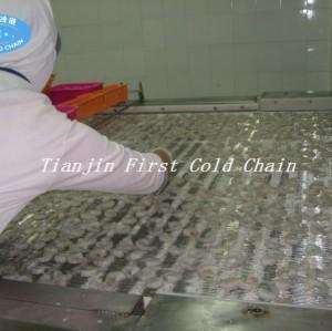 Tipo de túnel congelador rápido para pescado camarones pan