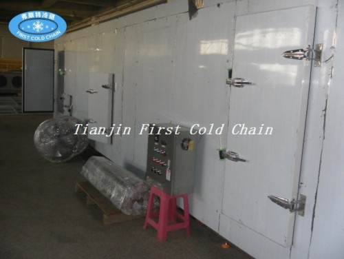 Tipo de túnel Quick Freezer para Fish Dumpings de camarones Filete de pescado