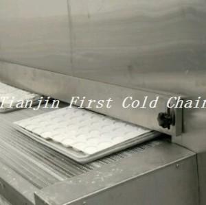 Congelado rápido de alta calidad de China para la exportación de helado América
