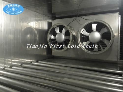 Tunnel de congélation économique de 300 kg / h en Chine pour le poulet congelé