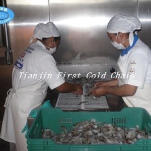 China Congelador rápido espiral 600kg / h rentable para los mariscos congelados