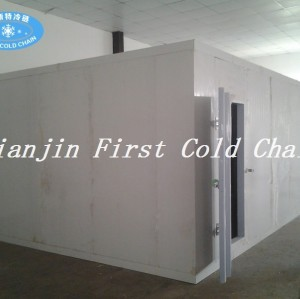 Высокоэффективная китайская холодная комната для рыбы или мяса