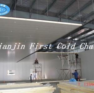La Chine fournit le stockage / la pièce à haute froid de qualité de pièce pour le poisson ou la viande