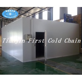 Personalización de China Almacenamiento en frío / Habitación para vegetales y frutas