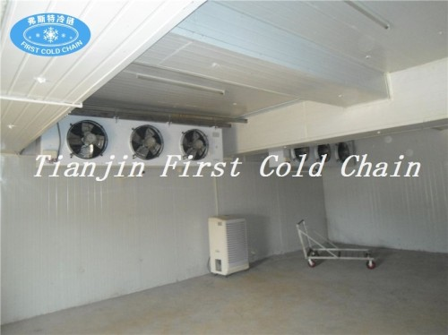 Stockage à froid rentable / local pour le stockage de viande / poisson congelés