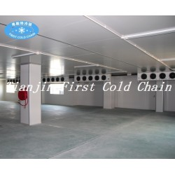 Hight quality Cold Storage/Room for Vegetable and meat