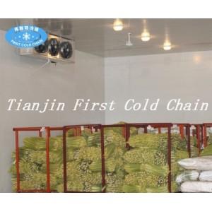 Китайская высокоэффективная холодная комната для замороженного мяса или рыбы