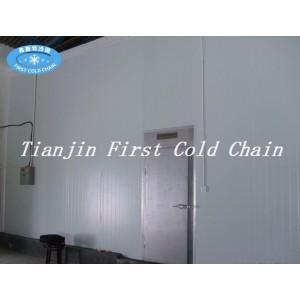 Fábrica de suministro de cámara frigorífica de alta calidad para carne o pescado congelado