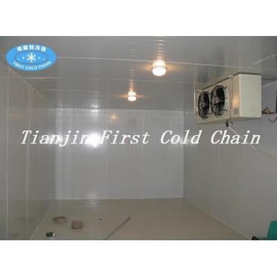Almacenamiento en frío / sala de verduras frescas y carne / pescado