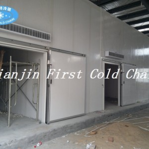 China Cold Room cost-effective customization/Storage/hot sale Cold storage for Vegetable or Fruit