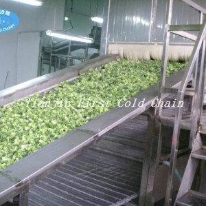 China High Quality Fluidized IQF Freezer for Berries Vegetable Fruit Seafood