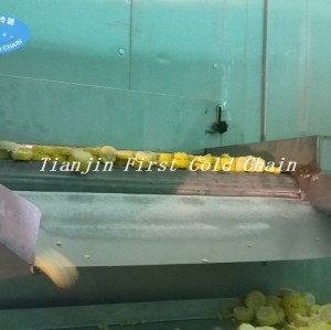 Fluidized Quick Freezing / IQF freezer for frozen french fries production line in China