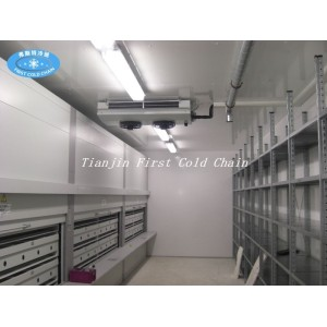 Low Temperature High Humidity Air Thawing Equipment  for Frozen Pork