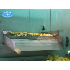 Première machine entièrement automatique 1500 kg / h de la chaîne du froid en Chine pour les fruits et légumes congelés