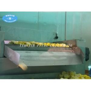 Морозильник IQF Замораживание свежих фруктов и овощей