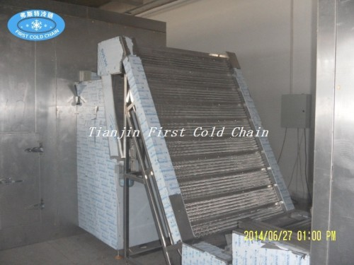 Cadena de producción de papas fritas congeladas de bajo precio