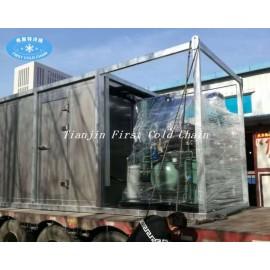 contenedor de almacenamiento sala fría congelada para carne y pescado customerized