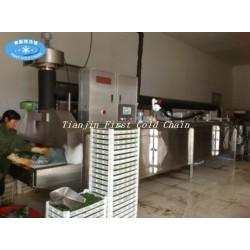 Congelador industrial rápido de la carne del nitrógeno líquido del refrigerador comercial