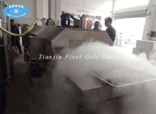 Congélateur de tunnel d'azote liquide à basse température -196 ℃ / congélateur Falsh pour les fruits de mer