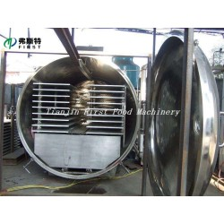 Food Vegetable and Fruit processing machine for Vacuum Freeze Dry Machinery