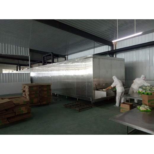 Tunnel Quick Freezer 1300KG/H  export Morocco