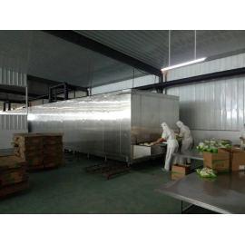 Approvisionnement d'usine de la Chine congélateur rapide rentable de tunnel 1000kg / h pour le poisson