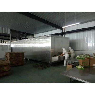 China fuente de la fábrica rentable 1000kg / h Túnel congelador rápido para peces