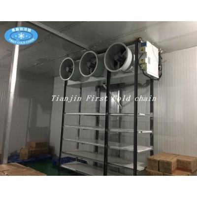 Suministro de China Hight calidad Almacenamiento en frío / Habitación para pescado o carne