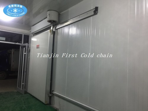China supply Hight quality Cold Storage/ Room for fish or meat food